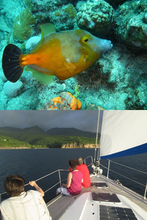 Sunset Balade bateau  voilier Deshaies Guadeloupe
